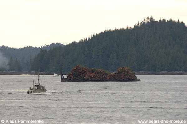 Holzfloß im Great Bear Rainforest / Log barge in the Great Bear Rainforest